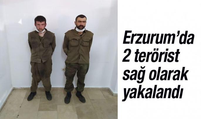 Erzurum'da 2 terörist sağ olarak yakalandı